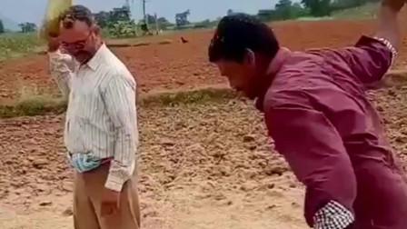 印度人没有大型收割机,小麦就是这样晾晒收割的,这才是最接地气的