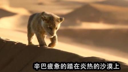 0121-疣猪和猫鼬救了只小狮子,_却不知是未来狮子王,还欺负它