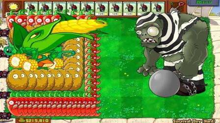 植物大战僵尸:红胡椒怒了,它能够摧毁一整排的僵尸呢!