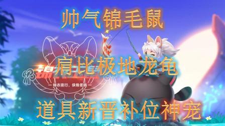 【QQ飞车手游】帅气锦毛鼠,究竟是龙龟弟弟还是新晋神宠?你想知道的这里都有