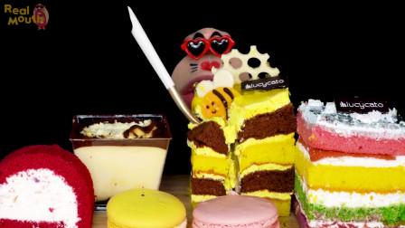彩虹蛋糕,芝士蛋糕,蜂蜜蛋糕,提拉米苏,马卡龙,摩奇