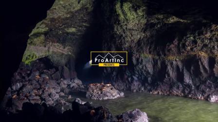 俄勒冈州海狮洞穴