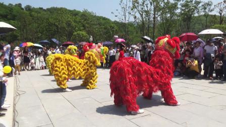 常宁,中国印山景区开园:现场舞狮表演