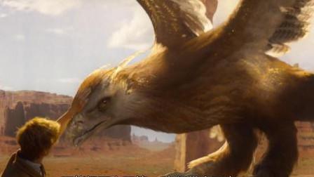 神奇动物在哪里:美丽的大鸟,雷鸟有改变气候的能力