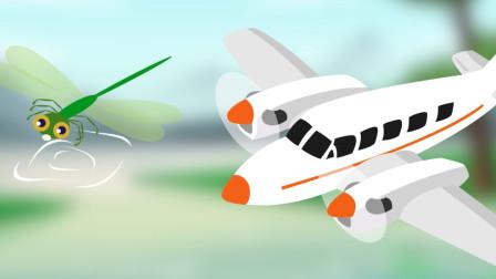 【科学嬉游记】蜻蜓的生命周期是怎样的——蜻蜓和飞机的相同点