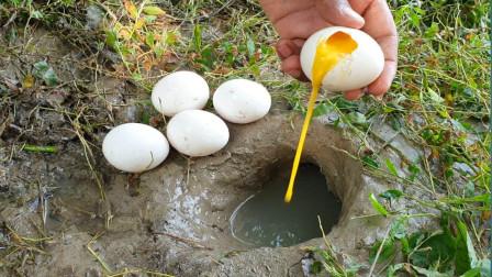 用蛋液捕鱼,洞里的鱼纷纷往外跳,你见过这样捕鱼的么?