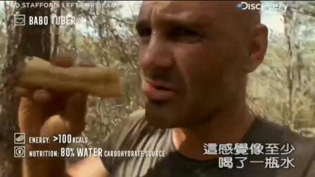 单挑荒野:德哥挖到一大块猴面包树块根,迫不及待的吃了起来,好吃!