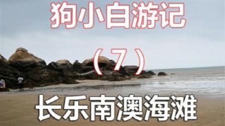 狗小白游记7长乐南澳海滩