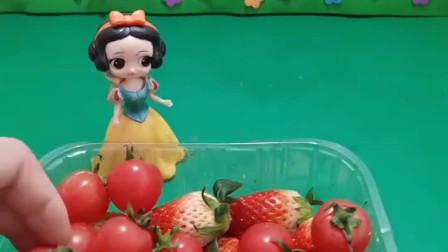 母后要吃水果沙拉,白雪用草莓和西红柿当材料,这沙拉营养又健康