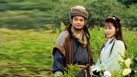 天龙八部第二十六回:萧峰再见杀父仇人段正淳,偶遇狠毒少女阿紫