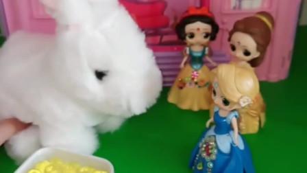 白雪贝儿都想养这只小兔子,白雪给兔子吃胡萝卜和青菜,白雪选的对吗?