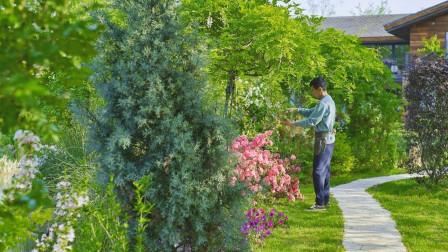 腾讯元老赚够钱后辞职,到安徽隐居,每天对着200亩地发呆