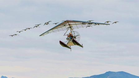 不要脸脱口秀 第一季:真实事件改编,父子研究飞行路线,带领候鸟迁徙