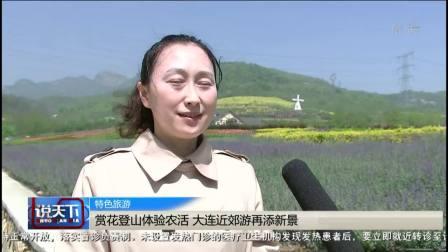 说天下 2020 沈阳市于洪区举办首届插秧文化节