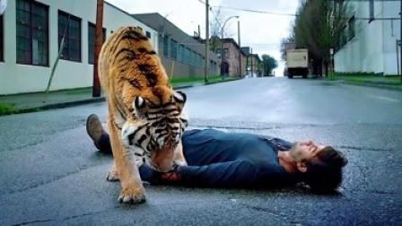 困兽:动物团结一致世界,人类无处可逃