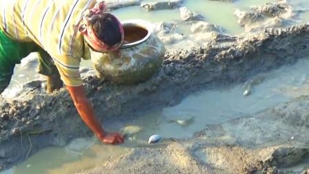 鱼塘放干水后,大叔去捡漏,沿着流水道一路抓个不停,这回赚发了