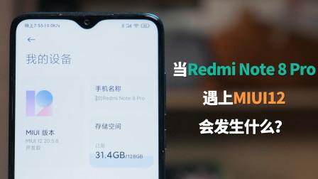 弱鸡配置遇上MIUI 12,Redmi Note8 Pro能否焕发新春天?