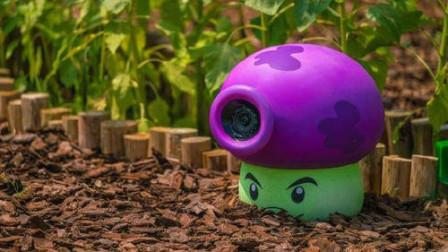 植物大战僵尸之花园战争:植物与植物之间的战斗值升上去