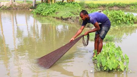 印度大哥池塘里捕鱼,一网下去,看看他捕获了多少?