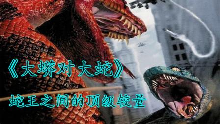 《大蛇对大蟒》:专家拿了巨蟒的蛇蛋,遭到了巨蟒的疯狂报复