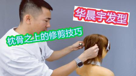 华晨宇发型第二集,鲻鱼尾发型枕骨之上的修剪技巧