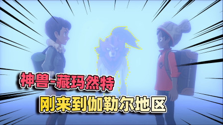 宝可梦剑盾01:刚来到伽勒尔地区,就碰到一只传说中的神兽!