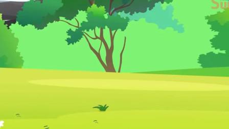 小马国女孩游戏艾达琪为什么种不出水果房子呢