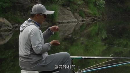 挑战北京高难纯野钓 突破窘境惊喜连连!还有鱼获放生别错过#钓鱼
