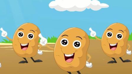 蔬菜 圆圆的土豆