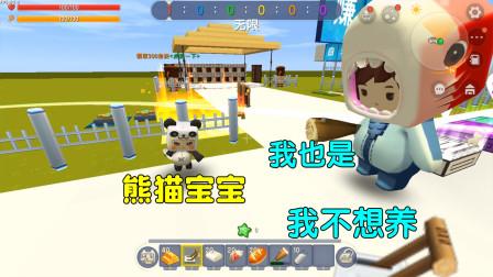 熊猫宝宝只想吃喝玩乐,却不想学习,小乾和小表弟都不愿意收养他