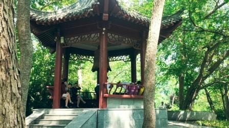 江苏南京六合区凤凰山公园风景区:金牛湖逍遥王拍摄