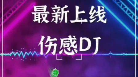 一首伤感DJ高清全屏手机动态音乐壁纸《中了爱情的枪》
