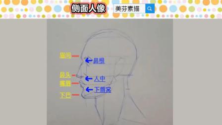 人像素描入门教程,素描人物侧面人脸五官比例的画法技巧!