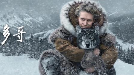 作为雪橇三傻的第一傻,哈士奇的祖宗是否傻的更纯粹?