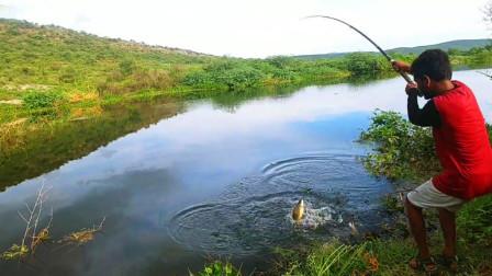 农村小哥,河边抛两竿,竿竿上鱼,看看这是啥鱼?