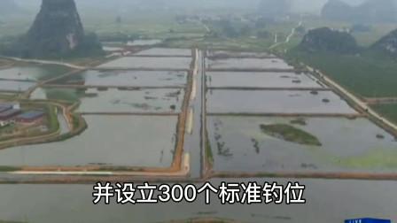 广西上林县鱼耕新韵高值鱼项目 白马庄基地非常壮观