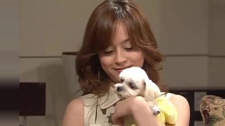 人鱼小姐:然而芮莹辞职了,马琳知道了狗狗跟她相似名字,就耍脾气回家了