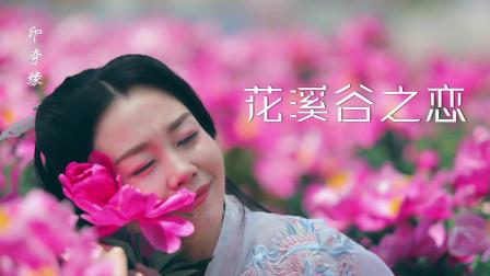 陕西最美花海,宜君花溪谷,演绎别样的爱恨故事