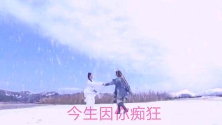刘亦菲、黄晓明版《神雕侠侣》歌曲合集