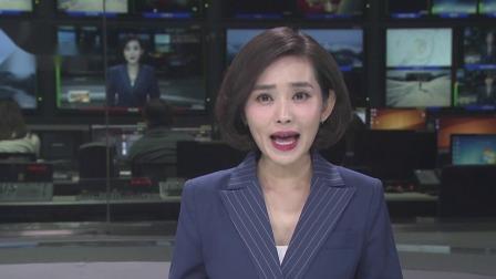第一时间 辽宁卫视 2020 优质产地出特级桑葚干