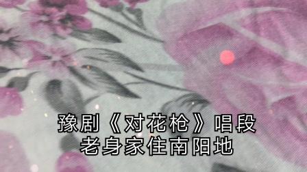 """豫剧名家马金凤《对花枪》""""老身家住南阳地""""唱段"""