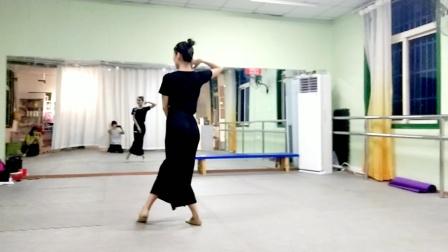 古典舞多情种视频分解动作三,阜阳艺路舞蹈提供