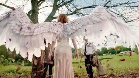 天使坠落人间,可美丽的天使外表也可能是假象!