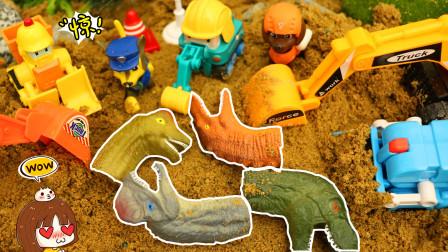 工程车队在沙子里挖出好多恐龙