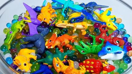 剑龙霸王龙三角龙模型和恐龙拼搭玩具
