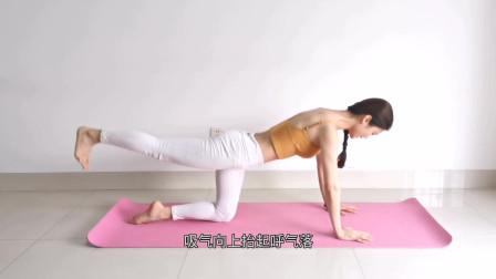 练瑜伽时,平衡不好?2个动作,提高腿部、腰腹核心力量!