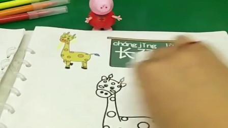 小猪佩奇玩具:有人把佩奇的长颈鹿弄坏了,乔治就把他擦了重画,真是太厉害了