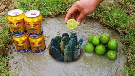老外用红牛捕鱼,挤了几滴柠檬进去,最后赚大发了!
