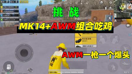 天赐俩鸡:挑战MK14+AWM组合吃鸡,8倍搭配AWM,一枪一个爆头