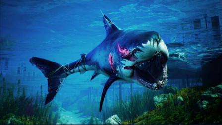【肯尼】直播回顾 Maneater 食人鲨 Day2 P2